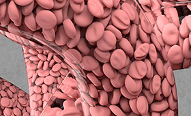 Shown is a simulation of arterial blood flow using HARVEY, a fluid dynamics software developed by Lawrence Fellow Amanda Randles. Visualization by Liam Krauss/LLNL.